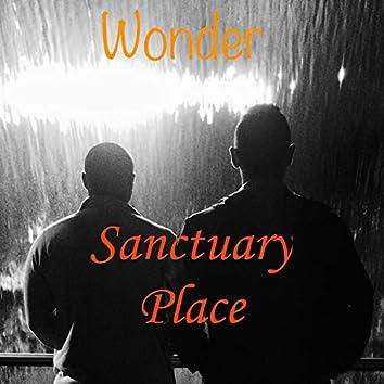 Wonder, Pt. 1