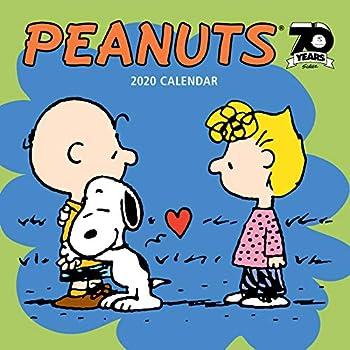 Best peanuts calendar 2019 wall Reviews