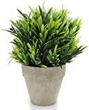 Velener Artificial Plants Fake Mini Potted Grass Arrangements for Home Decor (Green, Luohan)