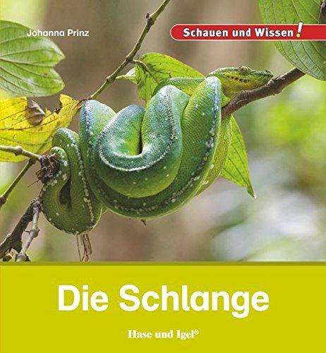 Die Schlange: Schauen und Wissen!