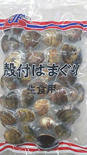 殻付 ハマグリ 生食用 500g はまぐり 蛤 業務用 冷凍