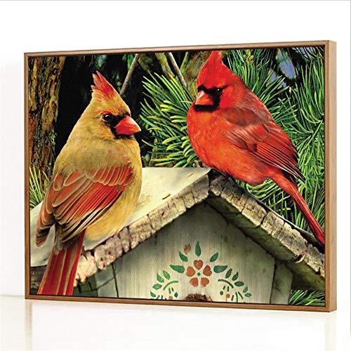 Diy Digitale Olieverfschilderij,Vogelhuisje twee vogels Schilderen Door Cijfers,Linnen Canvas ,Foto Voor Binnendecoratie - 40x50cm(Fotolijst)