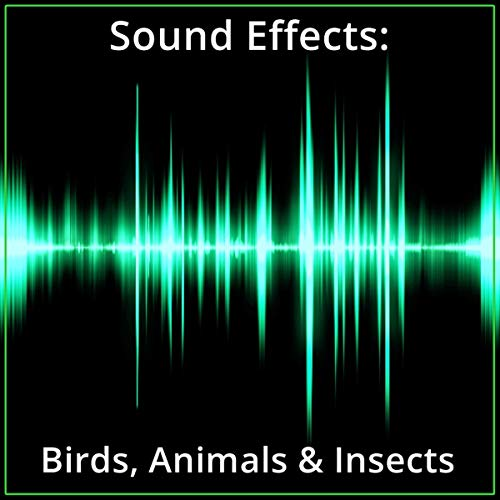 Sound Effects: Birds, Animals & Insects audiobook cover art