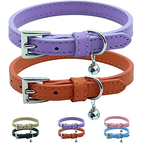 Traditional Buckle Collars