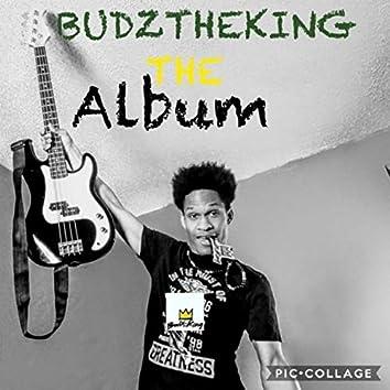 Budztheking the Album