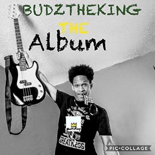 Budztheking