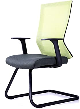 LJFYXZ Home Office Desk Chair Breathable mesh Home Bow Chair Cotton Cushion Steel Pipe Bracket Bearing Weight 120kg (Color : Green)