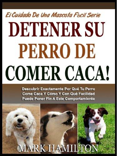 Detener Su Perro De Comer Caca Descubrir Exactamente Por Qué Tu Perro Come Caca Y