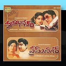 Premabhishekam / Premnagar Telugu Films