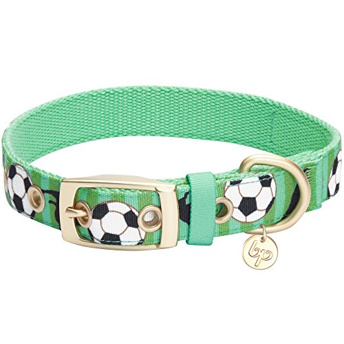 Blueberry Pet 5 Patterns Durable Sports Fan Soccer Canvas Dog Collar with Metal Buckle in Spring Green, Neck 13-16.5