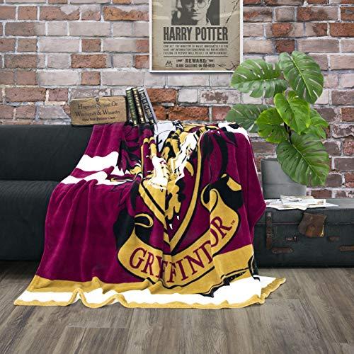 Character World kuschelige Flauschdecke Fleecedecke Harry Potter · 150 x 200 cm · Hogwarts-Schule · große Tagesdecke Kuscheldecke · Gryffindor