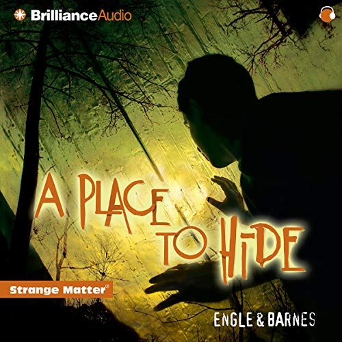 A Place to Hide audiobook cover art