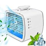 RIRGI Condizionatori Portatili, 3 in 1 Elettroventilatore,Condizionatori, Umidificatore,...