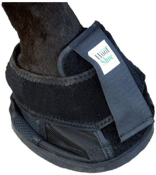 Intrepid International Penn Some reservation New products, world's highest quality popular! Equine Natural Hoof Shoe