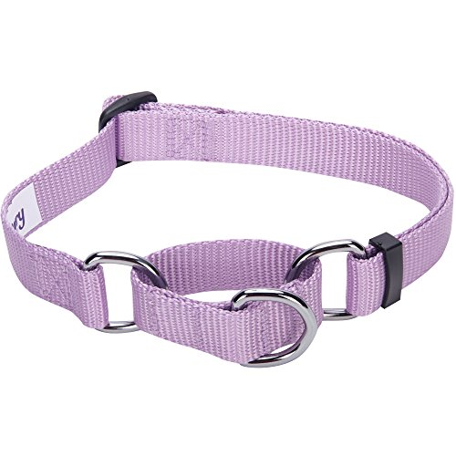 Blueberry Pet Essentials 21 Colors Safety Training Martingale Dog Collar, Lavender, Large, Heavy Duty Nylon Adjustable Collars for Dogs