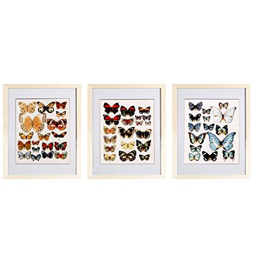 Belssia Cuadro con Diseño Mariposas, Madera, Multicolor, 42x2x33 cm