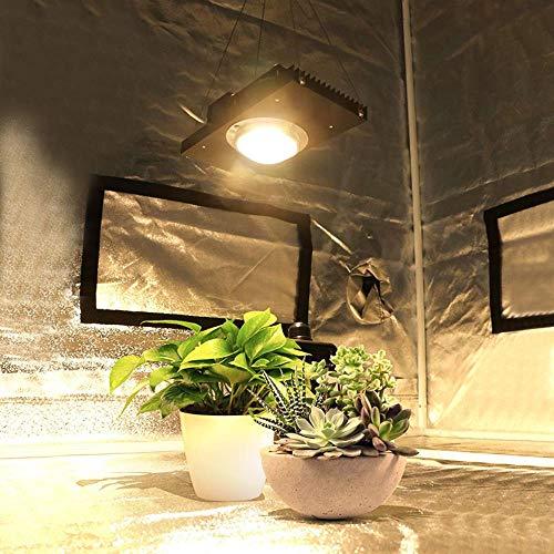 Miwaimao Plant Grow Light, 100W 200W COB Led Grow Light Full Spectrum Reemplace la lámpara Hps para hidroponía Planta de Carpa de Invernadero para Interiores, Cree Cxb3590.35KK