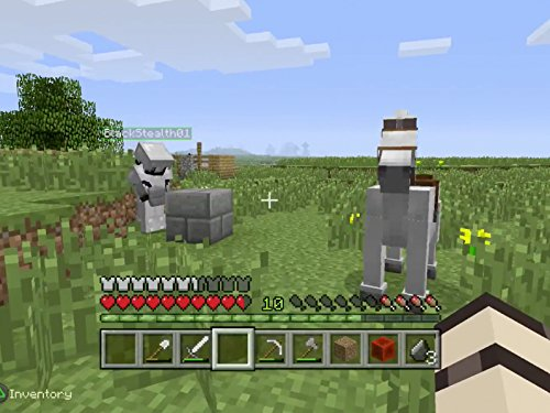 Clip: Fun With Horses