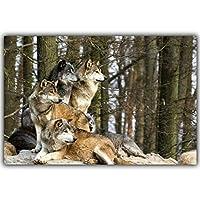 DIYダイヤモンド絵画オオカミ動物風景アート家の装飾リビングルーム壁紙フルラウンドドリルなしフレーム12x16
