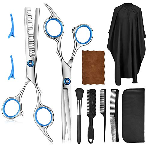 10 Pcs Professional Hair Cutting Scissors Set - HailiCare Hairdressing Scissors Kit, Hair Cutting Scissors, Thinning Shears, Hair Razor Comb, Clips, Cape for Home, Salon, Barber, Pet Grooming