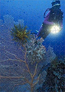 Media Storehouse 252 Piece Puzzle of A Large sea Fan (Subergorgia mollis) (19218904)