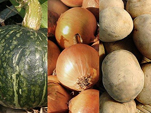 男爵いも&たまねぎ&かぼちゃセット 合計10kg 北海道産 じゃがいもとカボチャ(ほっこり 味平など)と玉ねぎ(北もみじなど)のセット