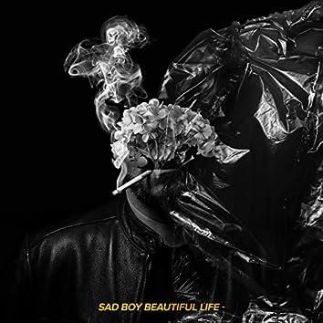 Sad Boy, Beautiful Life