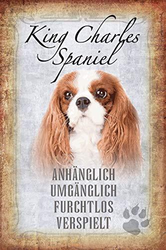 FS honden steekbrief King Charles Spaniel - handig, omslaand, onrustig speelse metalen bord bord 20 x 30 cm