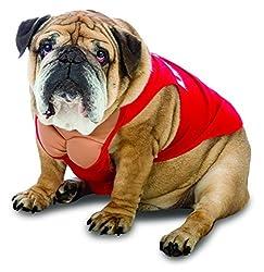 Zelda Life Guard Dog Costume