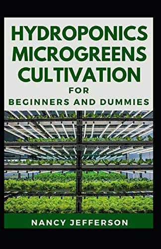 Hydroponics Microgreens Cultivation: The Nitty-gritty Of A Successful Hydroponics Microgreens Culivation
