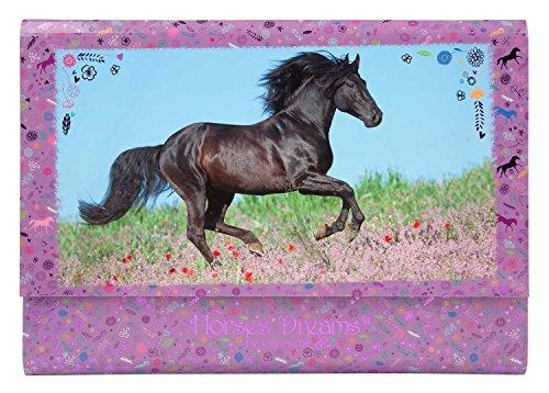 Depesche 8086 - Briefpapier in Fächermappe Horses Dreams, Lila
