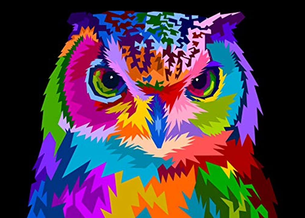 iKHome Paint by Numbers for Kids & Adults Beginner DIY Oil Animals Painting Kits On Canvas /16