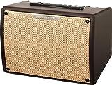 Ibanez T30II-U Troubadour amplificateur Combo pour Guitare Acoustique, 30W