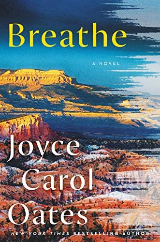 Breathe A Novel product image