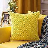 MIULEE Funda Cojin Fundas de Almohada Granulado Grande de Sofa Suave Comodo Color Solido Duradero Decorativa Fundas Poliéster Decoracion para Sofa Habitacion Dormitorio 1 Pieza 60X60cm Limón