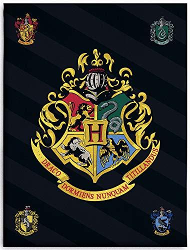 BERONAGE Große Harry Potter Hogwarts Wohndecke 150 x 200 cm super weiche Flanell-Decke Kuscheldecke Sofadecke Fleece-Decke Gryffindor Hufflepuff Ravenclaw Slytherin Ron Hermine Pass. zur Bettwäsche