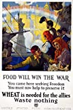 World War I US Poster NFood Will Win The War US Food Administration World War I Poster 1917 Poster Print by (18 x 24)