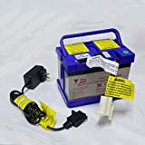 JUNGSON 12 Volt Battery and Charger Compatibal with for Kids Battery Powered Ride On Action Wheels Disney Frozen Sleigh / Motion Trendz Yamaha Raptor 700R