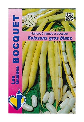 Les Graines Bocquet - Graines De Haricot À Rames Soissons Gros Blanc - 100G - Graines Potagères À Semer - Sachet De 100Grammes