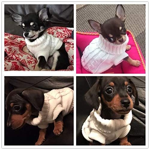 FidgetGear XXXS/XXS/XS Knitted Dog Sweater Cat Puppy Clothes Jumper for Chihuahua Teacup Beige XXS