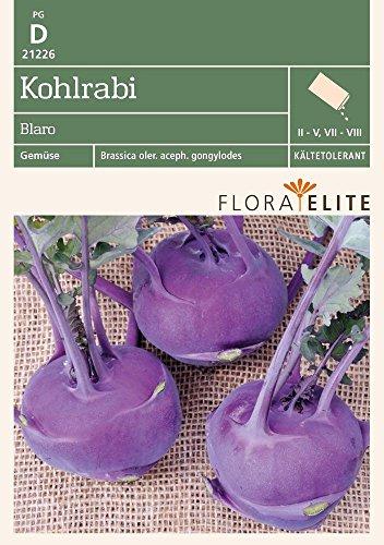 Flora Elite 21226 Kohlrabi Blaro (Kohlrabisamen) [MHD 06/2020]