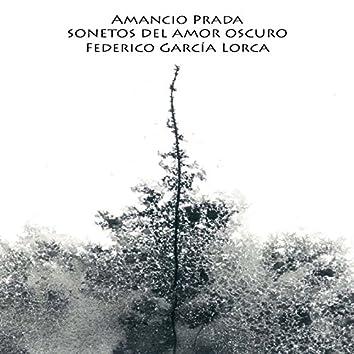 Sonetos del Amor Oscuro de Federico García Lorca