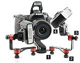 Nikon Staffa AGNO\'S Scorpion SB-R200 -Medical Close Up-