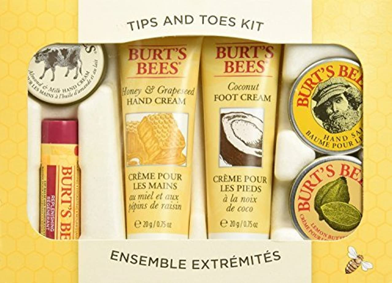 Burt's Bees Tips And Toes Skincare Starter Kit