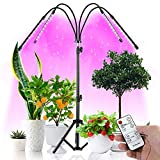 Grow Light with Stand-60+3.5 Inches,Newest Four-Head Full Spectrum Floor Plant Light,40W LED 10 Dimmable Level Grow Light with Red Blue Spectrum for Indoor Plants,4/8/12H Timer
