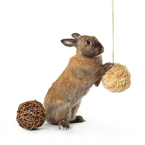 Niteangel Willow Branch Ball & Corn Leaf Ball, Small Animal Toys
