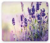 Lunarable Lavender Mouse Pad, Dreamlike Spring Day with Fresh Blossoms Aromatic Delicate Wild Flowers, Rectangle Non-Slip Rubber Mousepad, Standard Size, Lavender Lilac