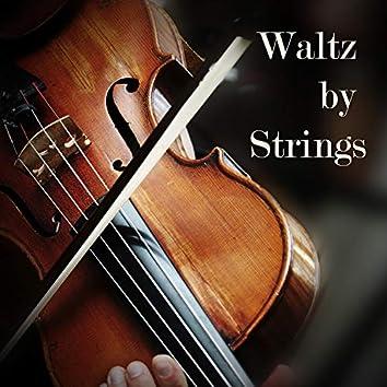 Waltz by Strings