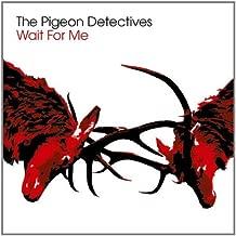 Best pigeon detectives vinyl Reviews