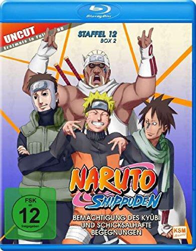 Naruto Shippuden - Staffel 12, Box 2 (481-495, 15 Folgen) (2-Disc-Set) (Blu-ray)